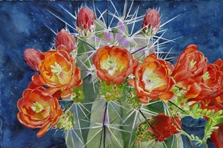 Dave Warren Big Bend Bouquet web