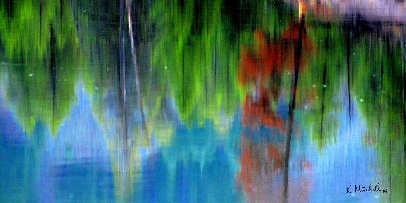 Karen Mitchell Reflections 10x20 425