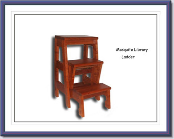 Randy Secrest Mesq Library Ladder web